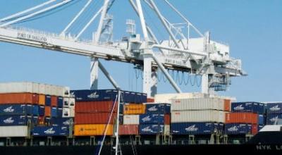 Freight Forwarding Survey